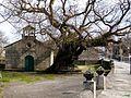 Pontevedra-Santa Margarita y el roble. (14074203564).jpg