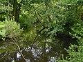 Pool near Wayford Bridge - geograph.org.uk - 3119.jpg