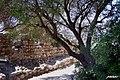 Posada - panoramio - patano (4).jpg