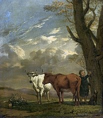 A shepherd with cows.