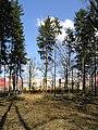 Prague Kunraticky Forest E 4.jpg