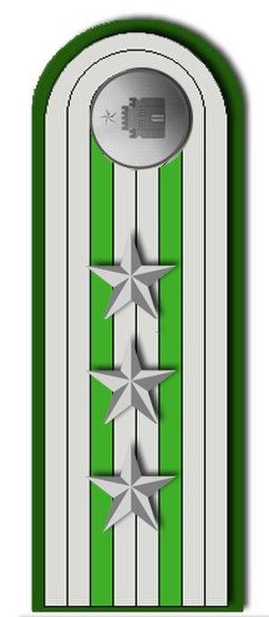 Chilean Gendarmerie - Image: Presilla Capitán de Gendarmeria