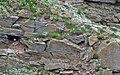 Puffins Nest and Grass - panoramio.jpg