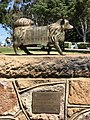 Puppy, sculpture at Picnic Point, Toowoomba.jpg