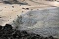 Puuhonua o Honaunau Historical Park, Captain Cook (504611) (23997240081).jpg