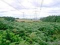 Pylons - geograph.org.uk - 229327.jpg