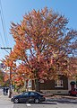 Quebec city in Autumn 04.jpg