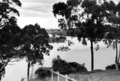 Queensland State Archives 191 Brisbane River at Yeronga c 1934.png