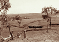 Queensland State Archives 2335 Farmlands near Allora 1897.png