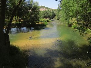 Río Duratón en la provincia de Valladolid 2.jpg