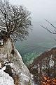 Rügen, am Königsstuhl (2013-02-14), by Klugschnacker in Wikipedia (3).JPG