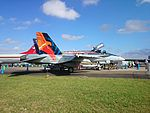 RAAF (A21-23) 'Worimi' McDonnell Douglas FA-18A Hornet on display at the 2015 Australian International Airshow 2.jpg