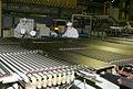 RIAN archive 167223 Public company Heavy Engineering Plant.jpg