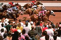 Racing at Ruidoso Downs.jpg