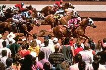 Racing at Ruidoso Downs.jpg