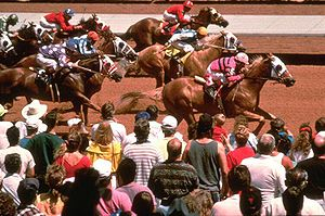 Ruidoso Downs, New Mexico - Horse racing at Ruidoso Downs