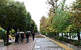 Rainy day of Tehran - 29 October 2011 13.jpg