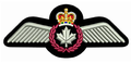 Rcaf Flight wings.png