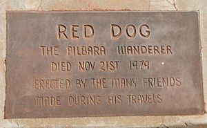Red Dog (Pilbara) - The Pilbara Wanderer