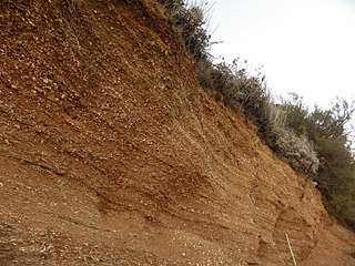 Red Crag Formation