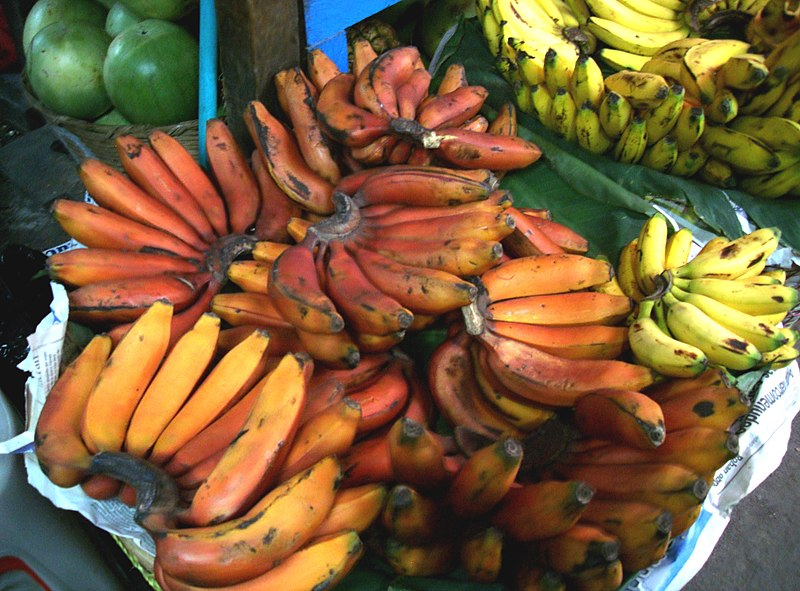 red bananas how to eat