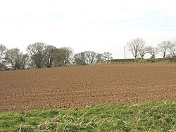 Reddish brown soils developed on lime-rich boulder clay - geograph.org.uk - 752566.jpg