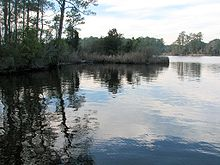 Reflection Goose Creek SP NC 8654.jpg