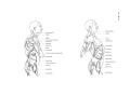 Richer - Anatomie artistique, 2 p. 111.png
