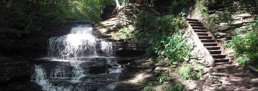 A waterall at left spills over many fine layers of rock, beside it on the right are wooden stairs without a railing. The whole scene is a mix of dappled sunlight and deep shade and there is lush green vegetation all around.