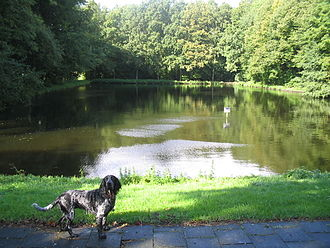 Huis ter Nieuwburg - One of two ponds from the gardens of the palace in the Rijswijkse Bos