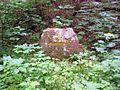 Ritterstein 196 Ehem Eisenerzgrube.JPG