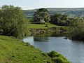 River Forth - geograph.org.uk - 184915.jpg