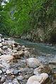River Mali Rzav and Visocka Banja Spa in Serbia - 4283.NEF 30.jpg