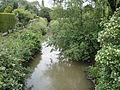 River Yar at Newchurch 2.JPG
