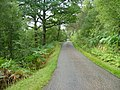 Road to Kinloch Hourn - geograph.org.uk - 233495.jpg