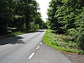 Road to Parkend - geograph.org.uk - 809207.jpg