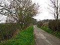 Roddans Road near Ballyhalbert - geograph.org.uk - 1183078.jpg