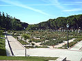 Rosaleda del Parque del Oeste (Madrid) 06.jpg