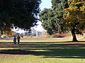 Royal Gardens at Kew (5341889674).jpg