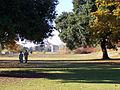 Royal Gardens at Kew (5341889674).jpg