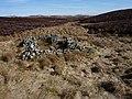 Ruin in moorland - geograph.org.uk - 1757588.jpg