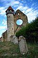 Ruinele Cârța 06.jpg