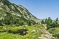 Ruisseau de Bassies 08.jpg