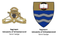 SADF Regiment University of Witwatersrand insignia.png