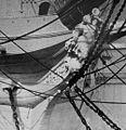 SMS Novara (1862) figurehead.jpg