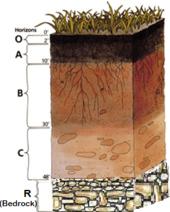 Bedrock wikipedia the free encyclopedia for Soil encyclopedia