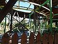 Safari Park (34374208152).jpg