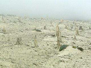 Caliche Calcium carbonate based concretion of sediment