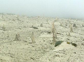 San Miguel Island - Image: San miguel island caliche