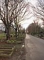 Scartho Road Cemetery, Grimsby - geograph.org.uk - 741922.jpg